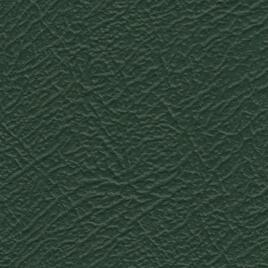 Vinide Leather Cloth - Apple Green